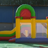 Хвастун напольного парка атракционов раздувной (FC-030)
