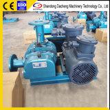 Dsr80V корни вакуумный насос для сбора пыли с сертификат ISO9001