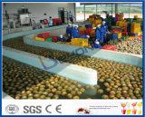 AnanasSaftverarbeitungzeile aufbereitende Zeile der frischen Ananas