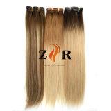 머리 연장에 있는 브라운 또는 까만 금발 색깔 사람의 모발 클립