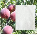 La meilleure vente dans le sac de papier de cire du marché du Pérou de raisin imperméable à l'eau de catégorie comestible pour Growing de fruit
