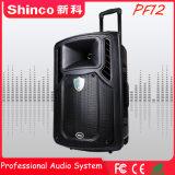 Shinco 12 Zoll beweglicher drahtloser Bluetooth aktiver Laufkatze-Lautsprecher
