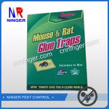 El papel de OEM de la rata y ratón de la Junta la trampa de pegamento fuerte pegamento adhesivo