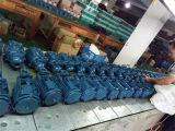 modello capo della pompa ad acqua di vortice 0.5HP di 220V/50Hz 35m Kf-0