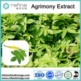 Super Quality Agrimony Extract 100% Natural, Agrimony Extract Powder 10:1 20:1