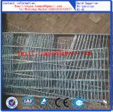 As gaiolas de coelho amplamente exportados para a África