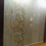 Panneaux de mur en plastique en bois du composé WPC de matériau de construction