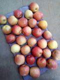 FUJI Plastica-Insaccato fresco Apple con colore rosso di 90%