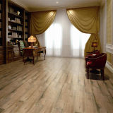 Porzellan Glazed Tile Floor in Wood