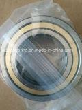 Roulement à rouleaux cylindrique Nu214e N214 Nj214 NF214 Nup214 fabriqué en Allemagne