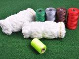 Cordicella del nylon di qualità 210d/2 di colore di varietà