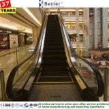 Dentro e ao ar livre escada rolante com o resistente para a alameda de compra