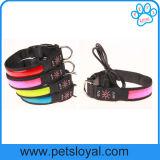 Accessoires de LED rechargeable Pet Pet Collier pour chien