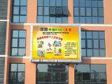 Exposição eletrônica de cor cheia do MERGULHO P8 para o anúncio ao ar livre