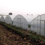 농업 상업적인 플레스틱 필름 정원 온실