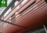 建物の装飾のためのWPCの天井