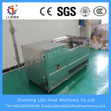 Máquina de lavar vegetal da escova da fruta do alimento automático industrial da abóbora