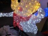 Proyecto de luz LED de Navidad para el hogar y decoración de jardín