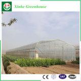 野菜花のトマトのためのMutiのスパンの農業のプラスチックフィルムの温室の製造者