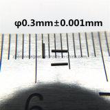 Super dünner NdFeB Zylinder D0.3mm