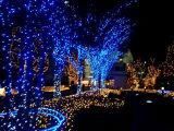 [لد] زهرة شجرة ضوء عطلة زخرفة حديقة شبكة [كريستمس ليغت]
