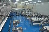 заводская цена Wholesales Stevia пороховой завод извлечения Ra 97% для сушеных фруктов