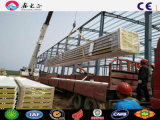 Edificio de estructura de acero Estructura de acero/Framework (SSW-263)