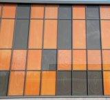 Impressão digital, oco, pintado, oco, temperado, flutuador, construção, janela, vidro, porta