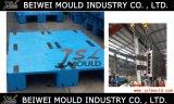 中国は注入プラスチックパレット型の製造業者を経験した