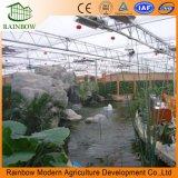 Invernadero de turismo agrícola para tomate