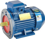 30HP High Efficiency Tefc -IP55 Three Phase AC Motor