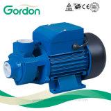Pompa ad acqua periferica elettrica di rame del collegare Qb60 con la ventola d'ottone