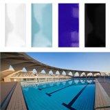 azulejo inferior de la porcelana de la piscina de la absorción de 240X115m m (B1152)