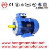 Motore elettrico di risparmio di temi Premium Ie3