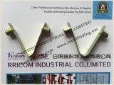 Clip galvanisé d'arrêtoir de ressort d'échafaudage à vendre Chine