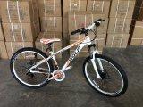 Vélo de montagne coloré de bâti d'alliage d'aluminium (MTB-004)