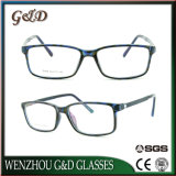 대중적인 형식 Ultem 알루미늄 사원 E024를 가진 플라스틱 Eyewear 안경알 광학 프레임
