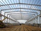 Colorare la struttura d'acciaio Warehoue di placcatura ed il workshop