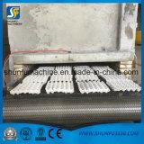 Fabricante moldeado reciclado automático de la máquina de las bandejas del huevo de la celulosa