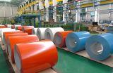 Pre-Painted bobinas de acero galvanizado (PPGI, PPGL, GI, GL)