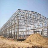 Costruzione modulare della struttura d'acciaio per la Romania