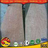 9mm Eaculyptus Madeira contraplacada (e1/okoume cola/bingtangor/birch/ash/Oak)