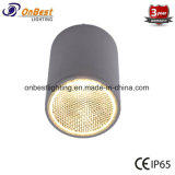 Antirreflejos COB LED 12W LED Spotlight en IP65