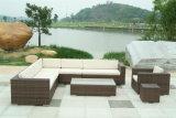 屋外の家具のソファーの家具の贅沢なソファーデザイン(SC-B6017)