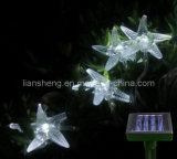 Chaîne de lumière solaire (LS-1044A)