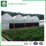 Légumes/jardin/fleurs/serre chaude plastique de ferme