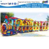 Il treno elettrico divertente esterno scherza la strumentazione di divertimento (M11-06804)