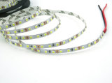 335 60LED 5mm 24V 4.8W LED azul flexible tira