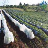 A colheita cobre UV não tecido lig girado Polypropylene da tela estabilizado