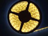 Cer RoHS Epister imprägniert der 5050 LED-Streifen-Licht mit Plastikrohr